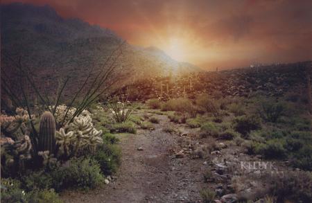 Desert2topaz fb