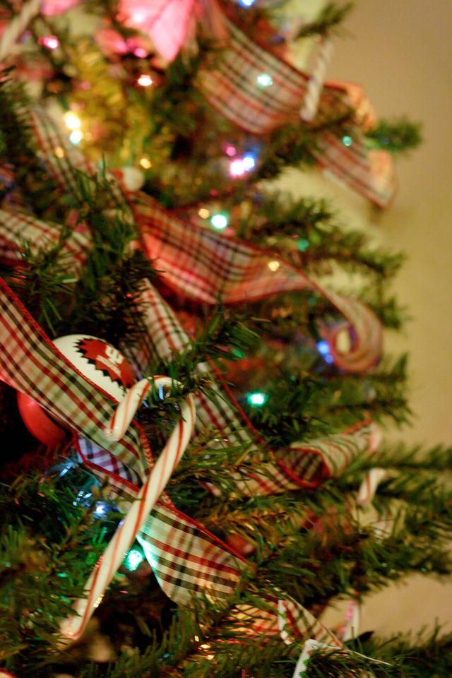 2nd Day of Christmas 2008